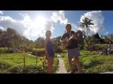 Tunes From Thailand Video 7 – Fireflies (Northern Thailand)
